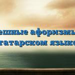 Смешные афоризмы на татарском языке